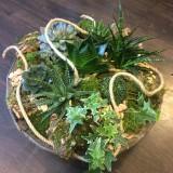 Vetplanten arrangement op schaal vanaf €35,00