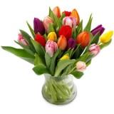 Tulpen boeket vanaf  €17,50